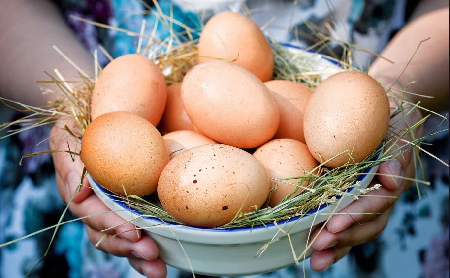 Какие куриные яйца лучше