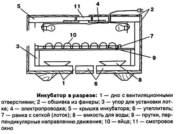 схема инкубатора для черепах