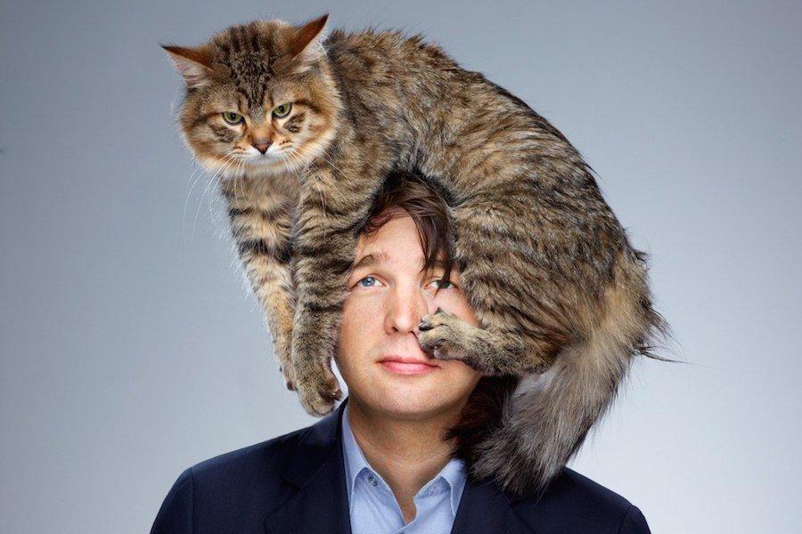 Пять мифов о кошках - Домашние животные